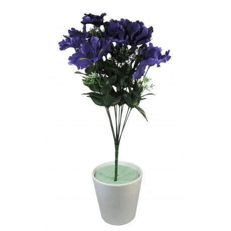 Ramo Iris x12 Lila
