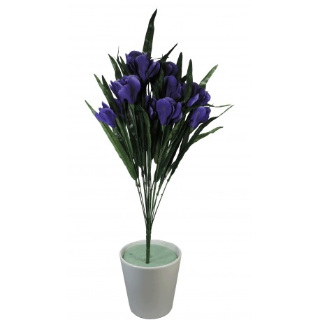 Ramo Iris x18 Lila