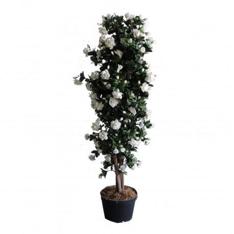 Planta Azalea 110 cm
