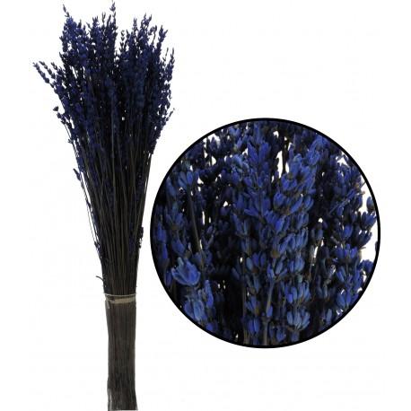 Lavanda Preservada Azul