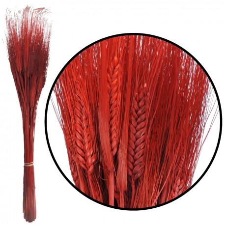 Triticum 200 gr Rojo