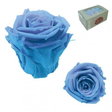 Rosa Azul cielo Mediana 8 uds Preservada