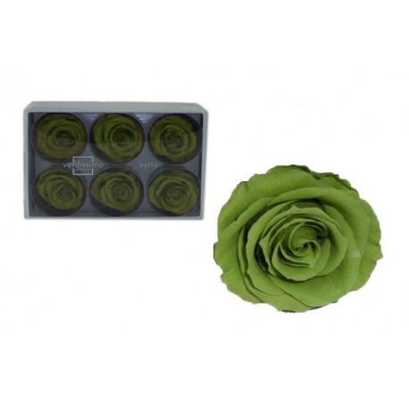 Rosa Verde té ExtraGrande 6 uds Preservada